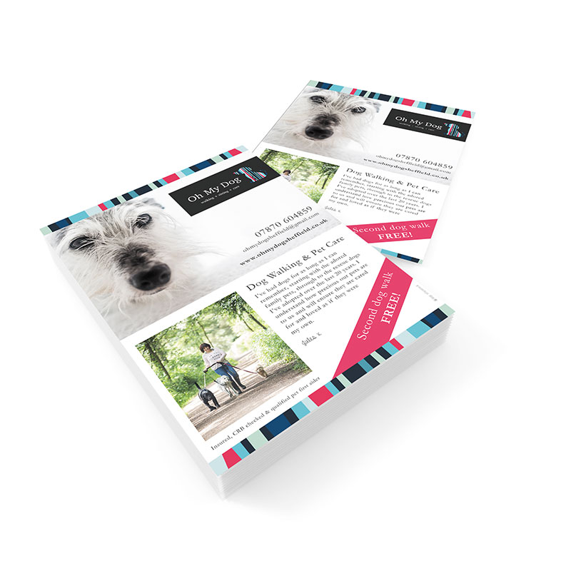 Oh My Dog Leaflet - Volta Creative