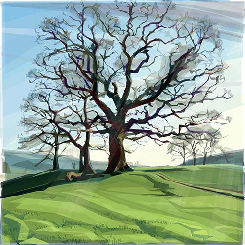 JRay Chatsworth Trees the oaks
