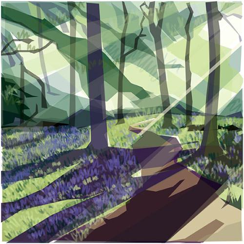 JRay spring in ecclesall woods