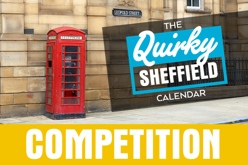 Quirky sheffield calendar photo competition